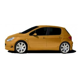Minigonne laterali sottoporta Peugeot 207 Protor