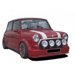 Minigonne laterali sottoporta e archi ruota Austin Mini