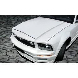 Cofano Ford Mustang