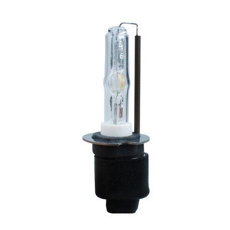 Lampadina Xenon Basic H3 12000K
