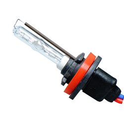 Lampadina Xenon Basic H9 4300K